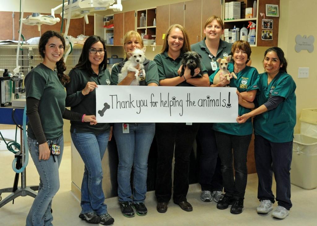 SPCA Thank You