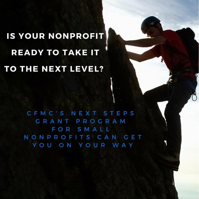 Next Steps for Small Nonprofits