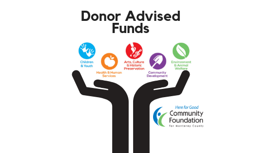 Donor advised fund investment options