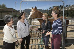 CNE Hope Horse and Kids