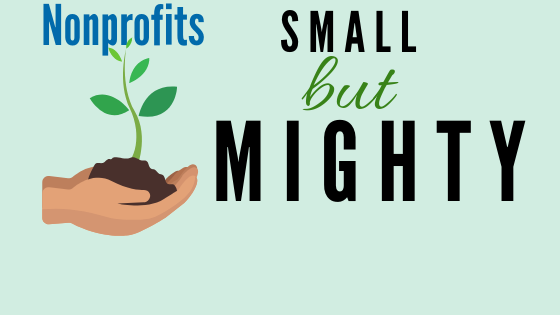 Supporting the Small But Mighty: Capacity Building for Smaller Nonprofits