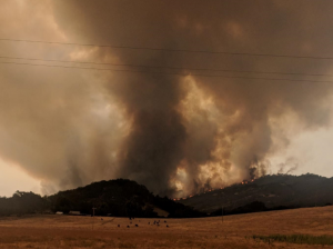 Carmel Valley Fire