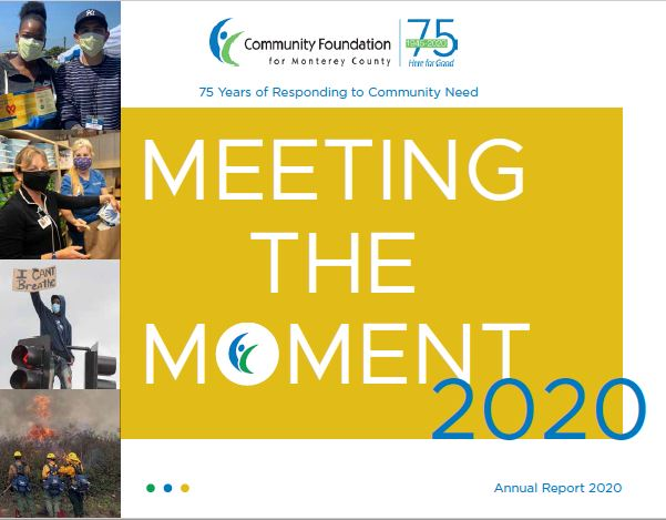 Meeting the Moment – 2020 Annual Report